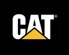 cat | Langley and Abbotsford Oil Change